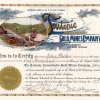Teutonic Consolidated Gold Mines Company, Cripple Creek, Colo. - Aktie von 1899. Die Gesellschaft wurde gegründet 1899 von der berühmten Lady Tycoon of Cripple Creek: Mollie E. O'Bryan. Sie kaufte den Teutonic claim für 3.000 $. Bereits einen Monat später wurden ihr dafür 35.000 $ geboten, sie lehnte jedoch ab, gründete die Minengesellschaft und verdiente ein Vielfaches davon in den folgenden Jahren.