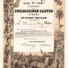 Zoo Dresden - Historische Gründeraktie des Actien-Vereins für den Zoologischen Garten zu Dresden über 50 Thaler aus dem Jahr 1861. Das Grundstück für den Dresdner Zoo im