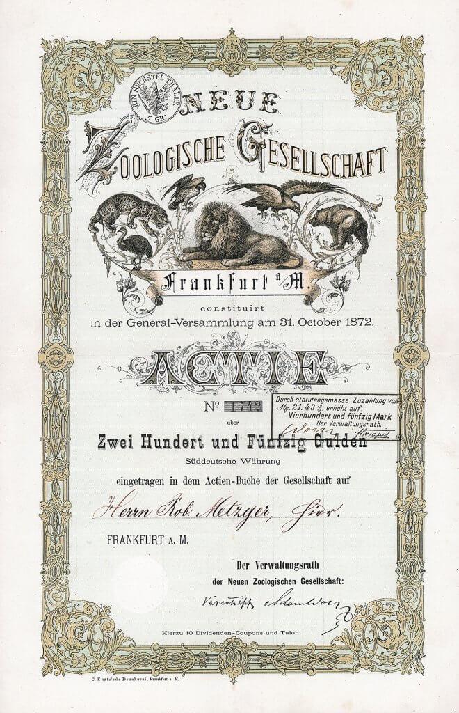 Zoo Frankfurt - Historische Aktie der Neuen Zoologische Gesellschaft in Frankfurt a.M. von 1872, Gründeraktie über 250 Gulden. Tolle Gestaltung mit Abbildungen von Raubtieren u.a. Löwen, Adler und Bär. 1915 wurde das Vermögen der Aktiengesellschaft auf die Stadt Frankfurt übertragen.