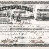 Metropolitan Steam Ship Company - Historische Aktie von 1880, ausgestellt auf und als Präsident original unterschrieben von H. M. Whitney. Als der vermeintliche Multimillionär 1923 im Alter von 84 Jahren starb hinterließ er laut The New York Times 1221 Dollars. Die Reederei war 75 Jahre lang eine der wichtigsten Transportverbindungen zwischen New York City und Boston.